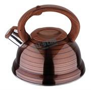 Чайник Wellberg WB-6659 2,5 л нержавеющая сталь
