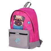 """Рюкзак подростковый Berlingo """"Cool dog"""" 40х29х16 см, 1 отделение, RU05702"""